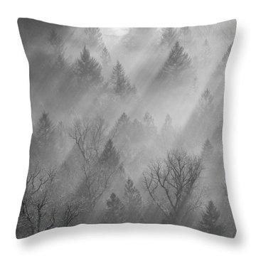 Morning Light -vertical Throw Pillow by Lori Grimmett