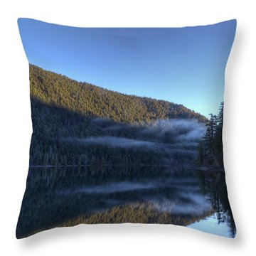 Morning Mist Throw Pillow by Randy Hall