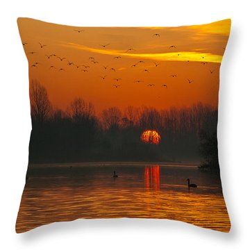 Morning Over River Throw Pillow