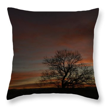 Morning Sky In Bosque Throw Pillow