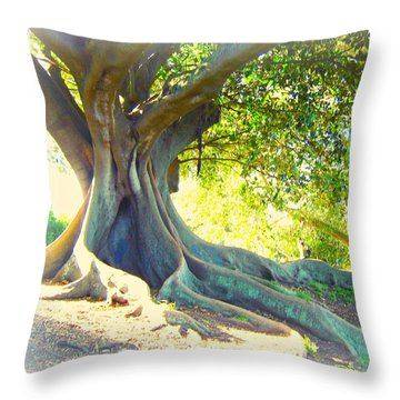 Morton Bay Fig Tree Throw Pillow