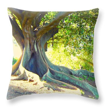 Morton Bay Fig Tree Throw Pillow by Leanne Seymour