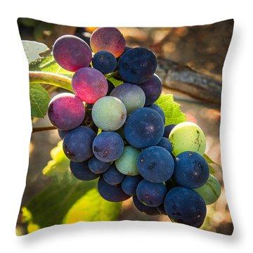 Mosaic Throw Pillow by Jean Noren
