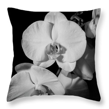 Moth Orchid Bw Throw Pillow