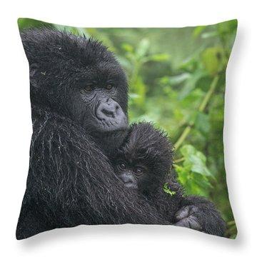 Mountain Gorilla, Gorilla Beringei Throw Pillow