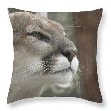 Mountain Lion Throw Pillow by Ernie Echols