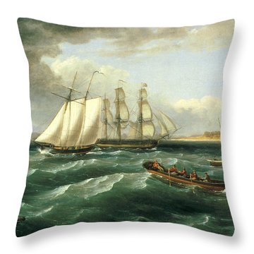 Mouth Of The Delaware Throw Pillow