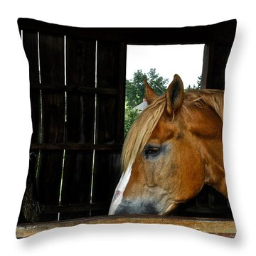 Mr Ed Throw Pillow