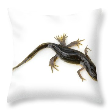 Mutated Eastern Newt Throw Pillow