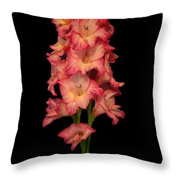 My Gladiolus Throw Pillow