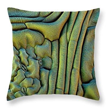 Nasturtiums Throw Pillows