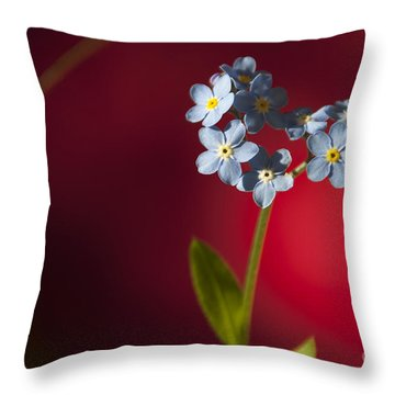 Nature Abstract Throw Pillow by Svetlana Sewell