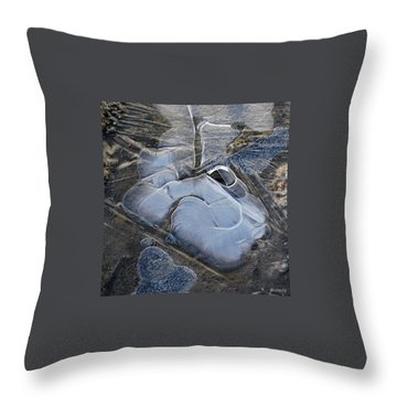 Throw Pillow featuring the photograph Nature Abstraction by Marija Djedovic