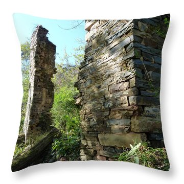 Throw Pillow featuring the photograph Nature's Door by Jane Ford