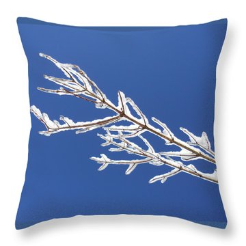Winter's Icing Throw Pillow