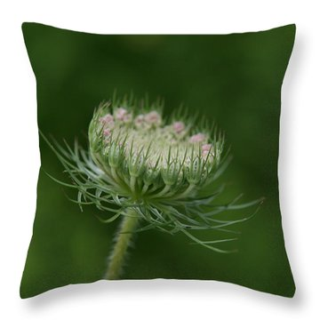 New Beginning Throw Pillow by Neal Eslinger