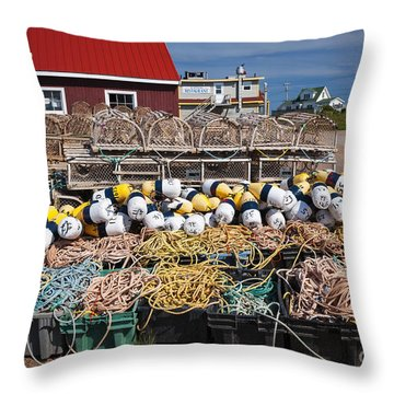 North Rustico Throw Pillow by Elena Elisseeva