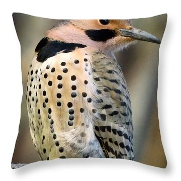 Northern Flicker Throw Pillow by Bill Wakeley