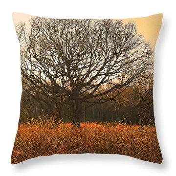 Oak Tree In A Field Throw Pillow
