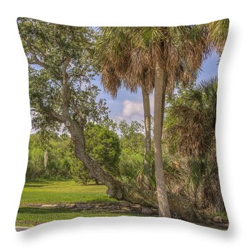 Throw Pillow featuring the photograph Oak Trees by Jane Luxton