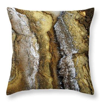 Ocean Cliff Textures II Throw Pillow