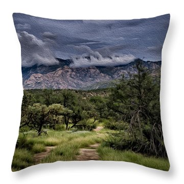 Odyssey Into Clouds Oil Throw Pillow