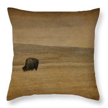 Western Themed South Dakota Bison  Throw Pillow