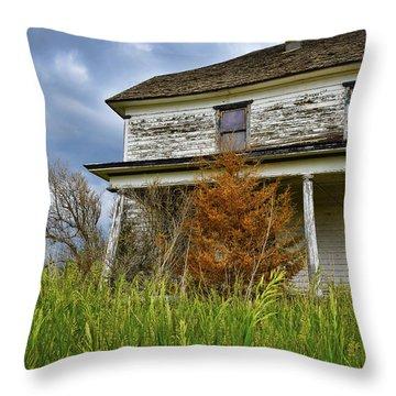 Omen Throw Pillow by Skip Hunt