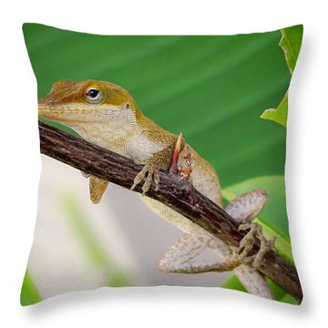 On Guard Throw Pillow by TK Goforth