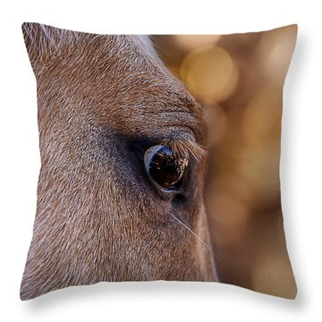 On Watch Throw Pillow by Doug Long