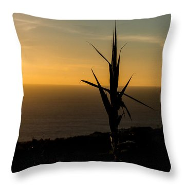 One At Sunset Throw Pillow