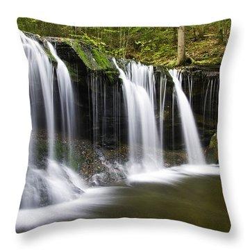 Oneida Falls Throw Pillow