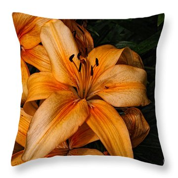 Orange Lilies Throw Pillow