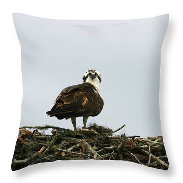 Osprey Nesting Throw Pillow