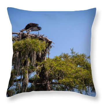 Osprey With Wings Forward Throw Pillow