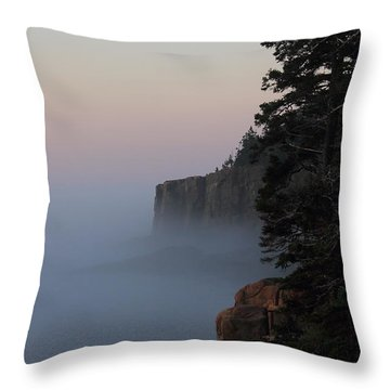 Otter Cliffs 2 Throw Pillow