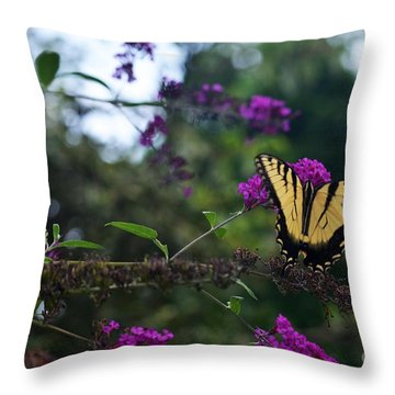 Out Of Bounds II Throw Pillow by Judy Wolinsky