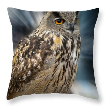 Throw Pillow featuring the photograph Owl Alba Spain  by Colette V Hera  Guggenheim