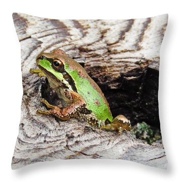 Pacific Chorus Frog Throw Pillow
