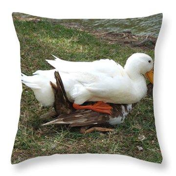 Pajarillo Throw Pillow