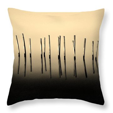 Palisade Throw Pillow by Robert Geary