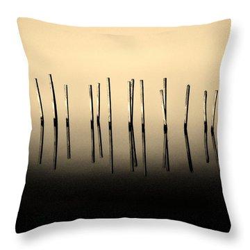 Palisade Throw Pillow