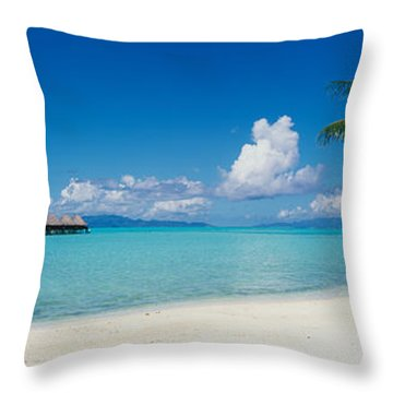 Palm Tree On The Beach, Moana Beach Throw Pillow