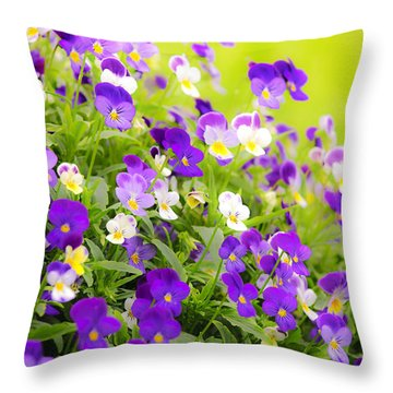 Pansies Throw Pillow by Elena Elisseeva