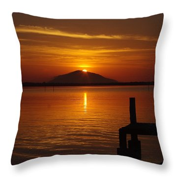 Paradise Throw Pillow by Blair Stuart