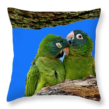 Parakeet Pair Throw Pillow