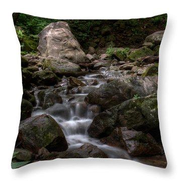 Parfrey's Glen Creek Throw Pillow