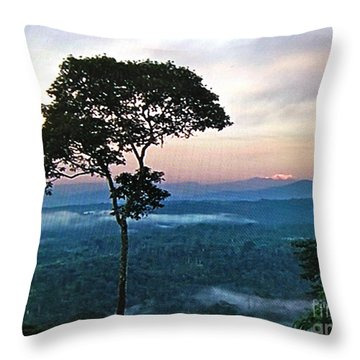 Peace And Serenity Throw Pillow
