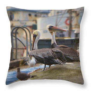 Pelican Duo Throw Pillow by Donna Greene