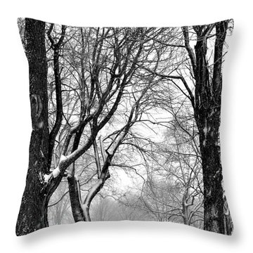 Penn Treaty Park Picnic Throw Pillow